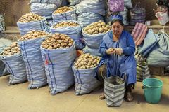 Oidentifierad bolivian kvinna som säljer potatisar på den centrala marknaden i Sucre, Bolivia Arkivfoton