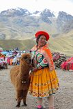 Oidentifierad kvinna med Alpaca på den Limite lilla medicinflaskan Puno region peru royaltyfri bild