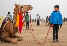 Oidentifierad pojke som rymmer tygeln av en stor kamel Royaltyfri Fotografi