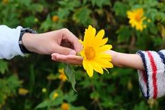 Oidentifierade barnpar som räcker den gula blomman Royaltyfri Foto
