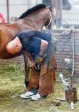 Oidentifierade Horseshoer i arbete Arkivbilder