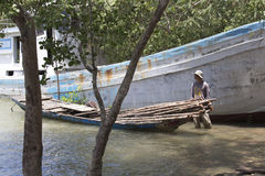 Oidentifierat vietnamesiskt samlande trä Arkivbilder