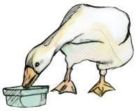 Oie d'isolement sur n.4 blanc Photos libres de droits