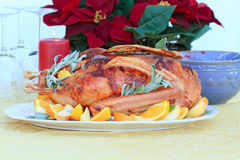 Oie de Noël Photo stock