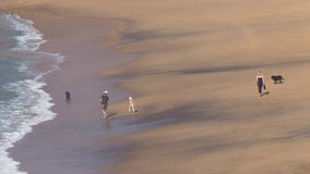 Oigenkännlig familj som promenerar stranden royaltyfria bilder