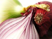 Oignon Photo stock