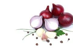 Oignon avec l'ail et les épices Photographie stock libre de droits