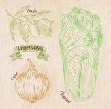 Oignon de légumes, chou de napa, pays d'olives Images libres de droits