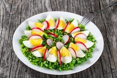 Oignon de ressort, oeufs, salade de radis, fin  Images libres de droits