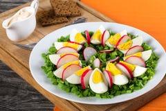 Oignon de ressort, oeufs, salade de radis, fin  Images stock