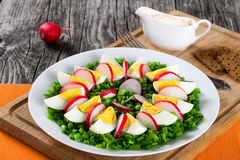 Oignon de ressort, oeufs, salade de radis, fin  Photo stock