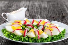 Oignon de ressort, oeufs, salade de radis, fin  Image libre de droits