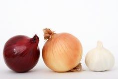 Oignon et ail Photo stock