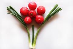 Oignon et radis de ressort Photographie stock libre de droits