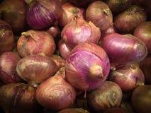 Oignon frais Photo stock