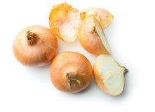 Oignon frais divisé en deux Photo stock