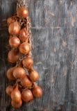 Oignon mûr sur un bois Photo libre de droits