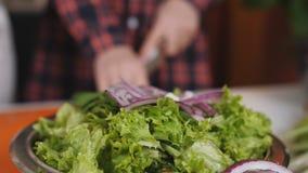Oignon pourpre coupé en baisse dans le plat avec de la salade, mouvement lent banque de vidéos