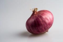 Oignon rouge d'oignon blanc Images stock
