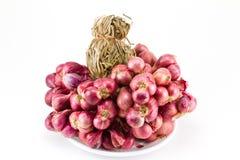 Oignon rouge organique Photo stock