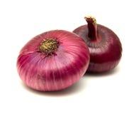 Oignon rouge plat Image stock