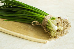 Oignon vert frais sur un conseil en bois Image stock