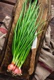 Oignon vert ou oignon blanc sur le panneau en bois, ciboulette fraîche de ressort Image libre de droits