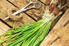 Oignon vert sur le fond en bois Photo stock