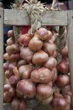 Oignons à vendre au marché d'un fermier Photo libre de droits