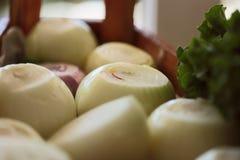 Oignons épluchés sur un buffet image libre de droits