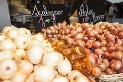 Oignons Image stock