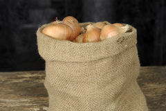 Oignons dans un sac de jute Image stock