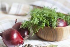 Oignons et aneth Image stock