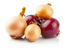 Oignons et oignons rouges sur le blanc Photo libre de droits
