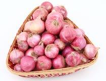 Oignons frais Photos stock