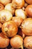 Oignons frais Affichage coloré des oignons jaunes sur le marché Onio Photographie stock libre de droits