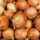 Oignons frais Affichage coloré des oignons jaunes sur le marché Onio Image stock