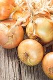 Oignons frais sur la table en bois Photos stock