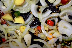 Oignons mélangés, gingembre, poivre, graines, racine de safran des indes dans une casserole photographie stock libre de droits