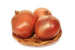 Oignons napiform Images stock