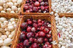 Oignons pourpres et blancs dans l'abondance sur l'affichage au marché local d'agriculteur Photo stock