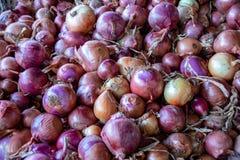 Oignons rouges à vendre à un souk à Agadir, Maroc photo stock