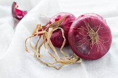 Oignons rouges Photo stock