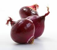 Oignons rouges brillants (allium) Photo stock