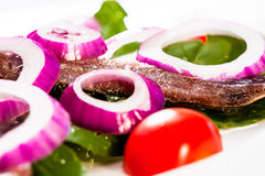 Oignons rouges et anchois Photo stock