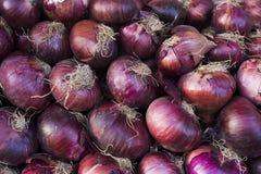 Oignons rouges frais de récolte d'oignon Fond d'oignons Oignons mûrs Oignons sur le marché Images libres de droits