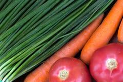 Oignons verts, carottes lavées, tomates rouges photo stock