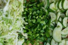 Oignons verts de concombres de chou de l?gumes photographie stock libre de droits