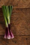 Oignons verts de ressort sur la table en bois images stock