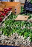 Oignons verts du marché de Rhodes Photographie stock libre de droits